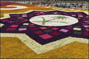 Royal Commission of Jubail & Yanbu Reclaim the Guinness World Record Title for �Largest Carpet of Fl ...