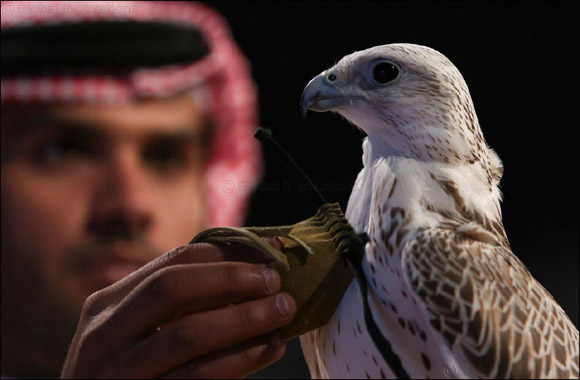 2nd Saudi Falcons and Hunting Exhibition opens in Riyadh Friday