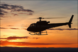 The Helicopter Company Purchases 10 Airbus H125 helicopters